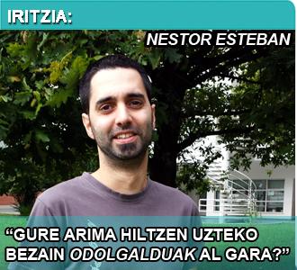 Iritzia